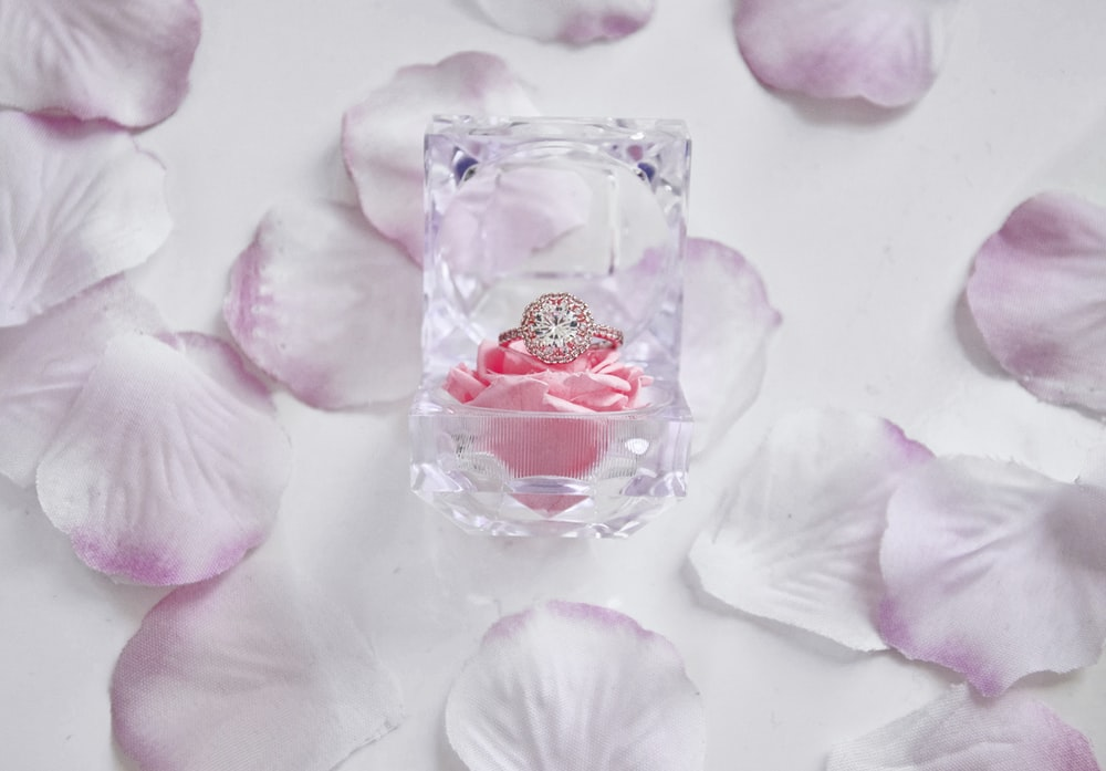 clear glass perfume bottle on pink flower petals
