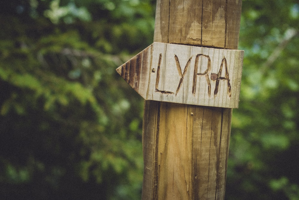 brown wooden arrow sign on brown wooden post