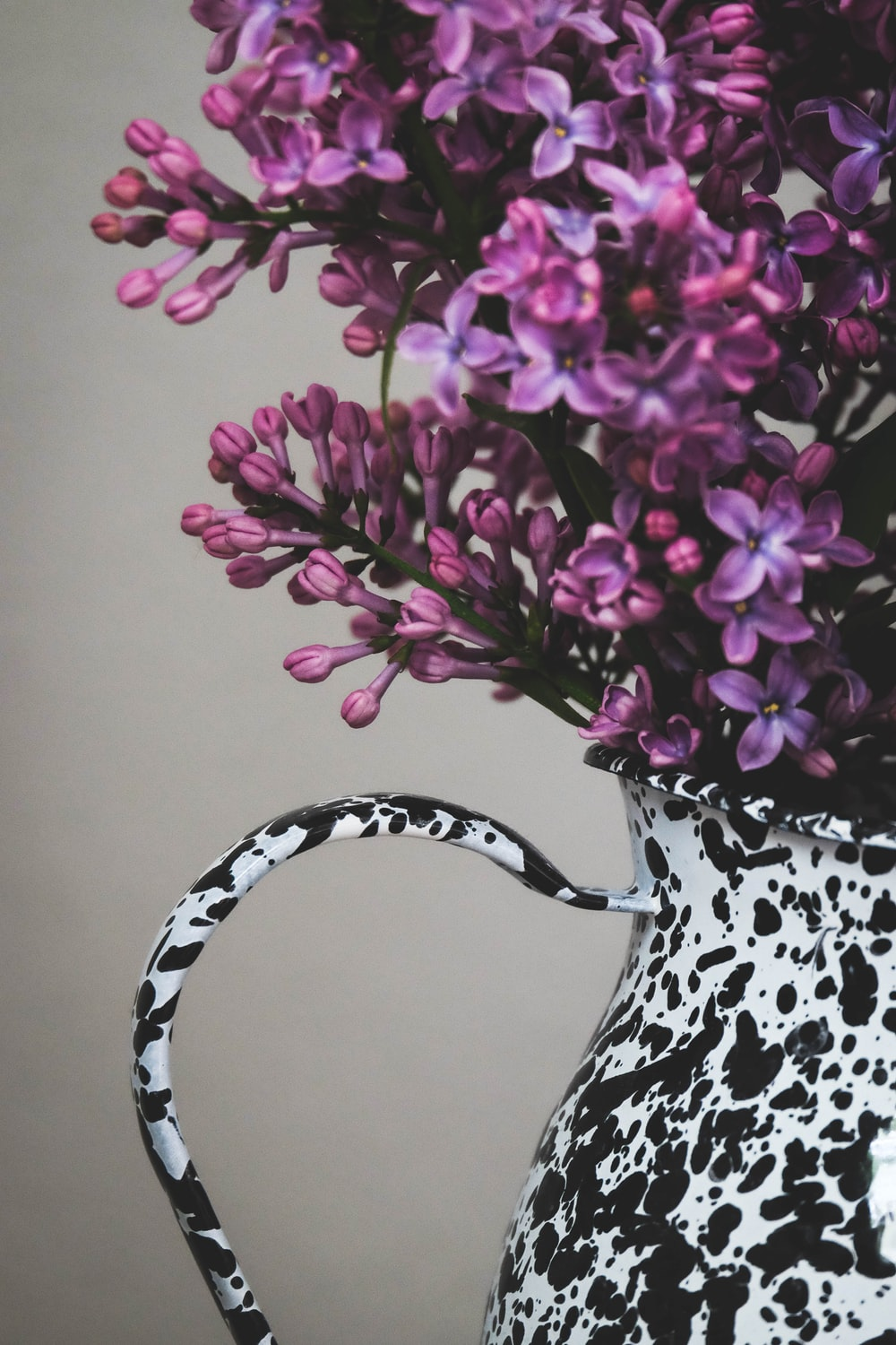 purple and white flowers in white and black ceramic vase
