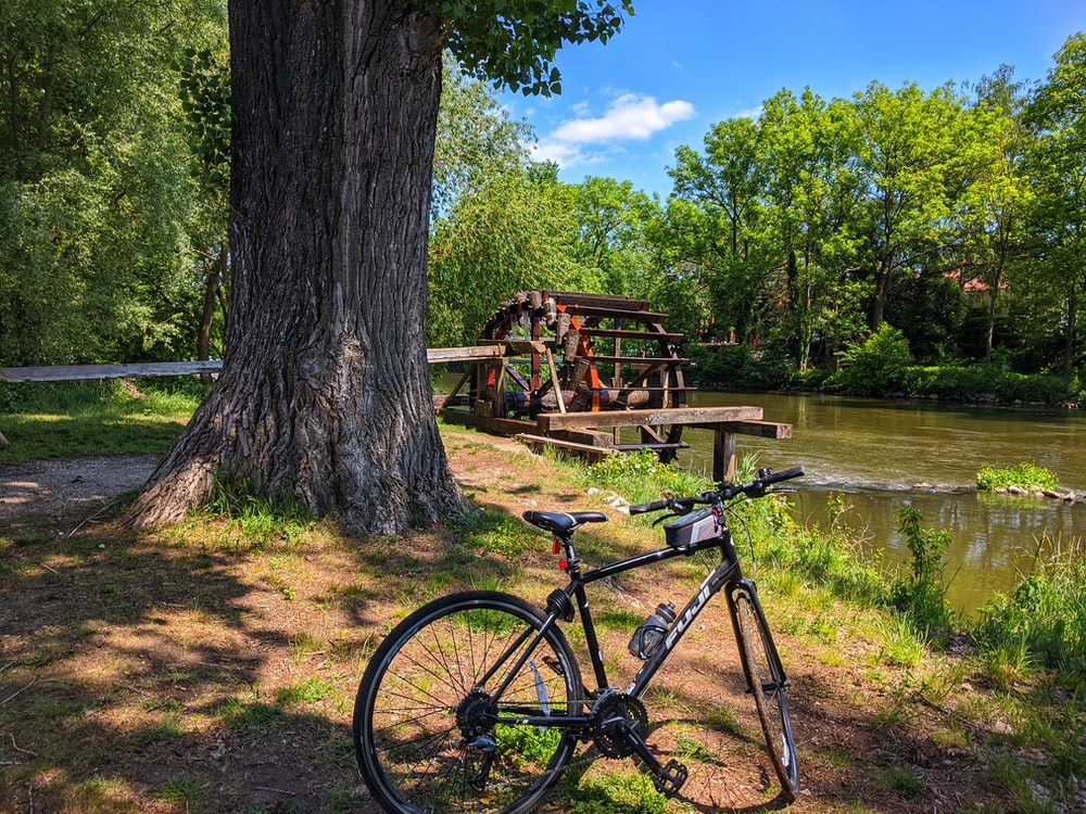 black commuter bike parked beside brown tree trunk near river during daytime