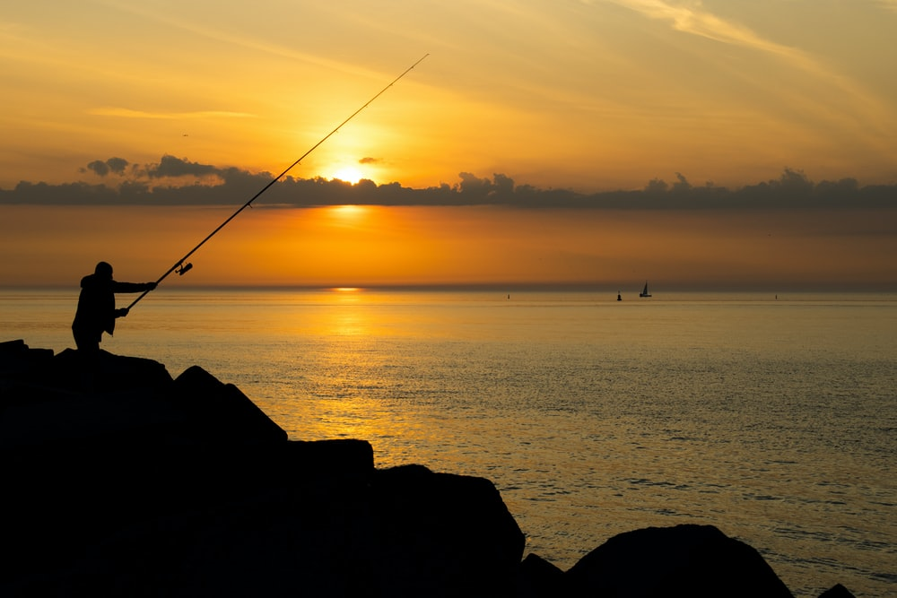 silhouette of person fishing on sea during sunset