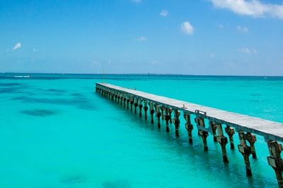 people walking on wooden dock during daytime cancun teams background