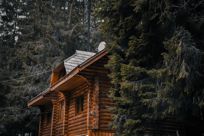 brown wooden house near green trees during daytime log cabin zoom background