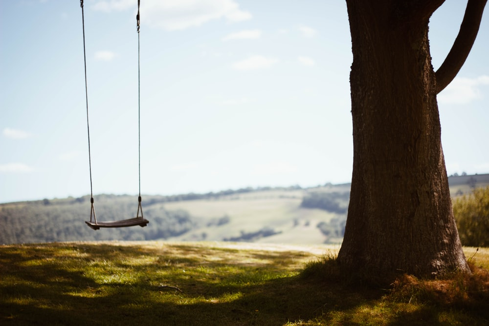 brown wooden swing on green grass field during daytime