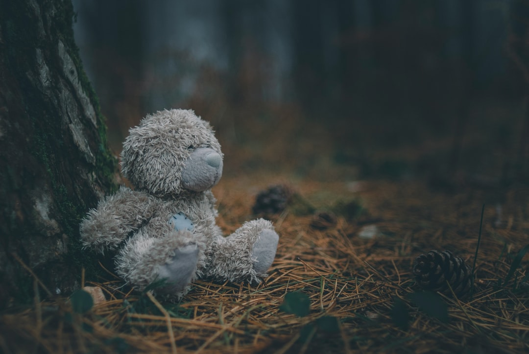 Little Teddy Beer is left alone in the foggy woods.