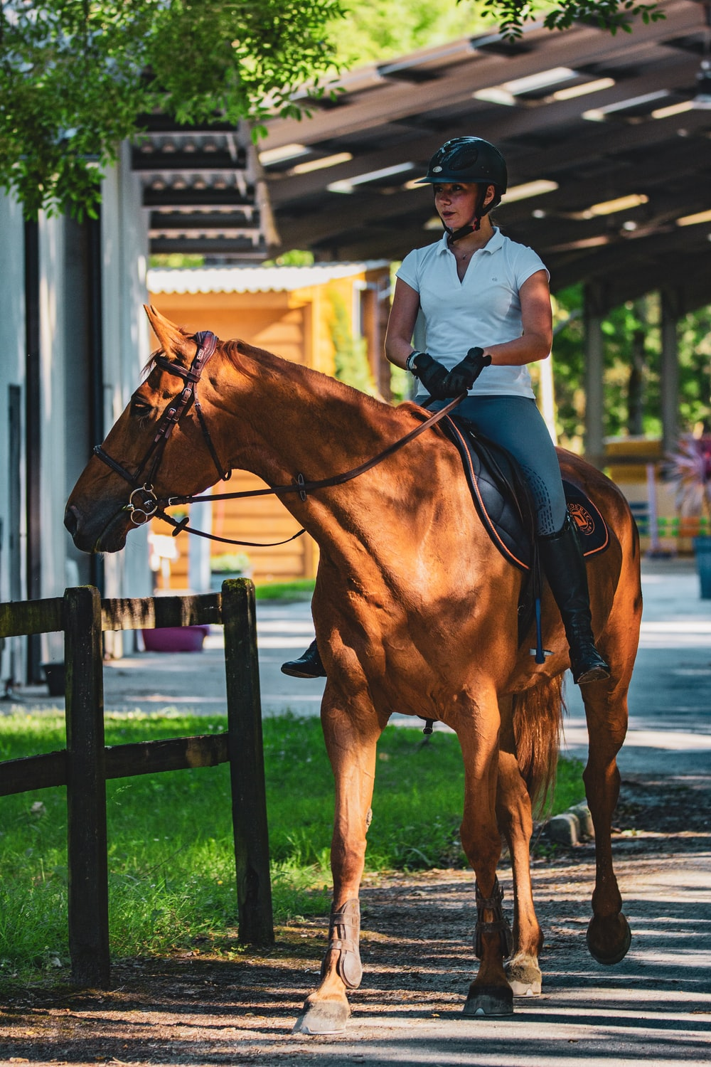 man in white polo shirt riding brown horse during daytime