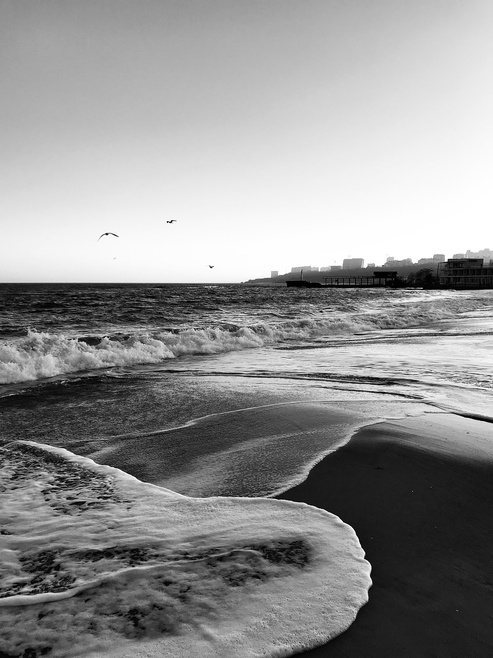 grayscale photo of birds flying over the sea