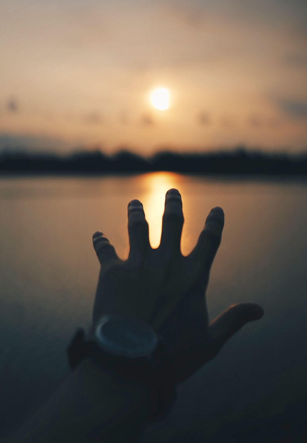 persons hand near body of water during sunset