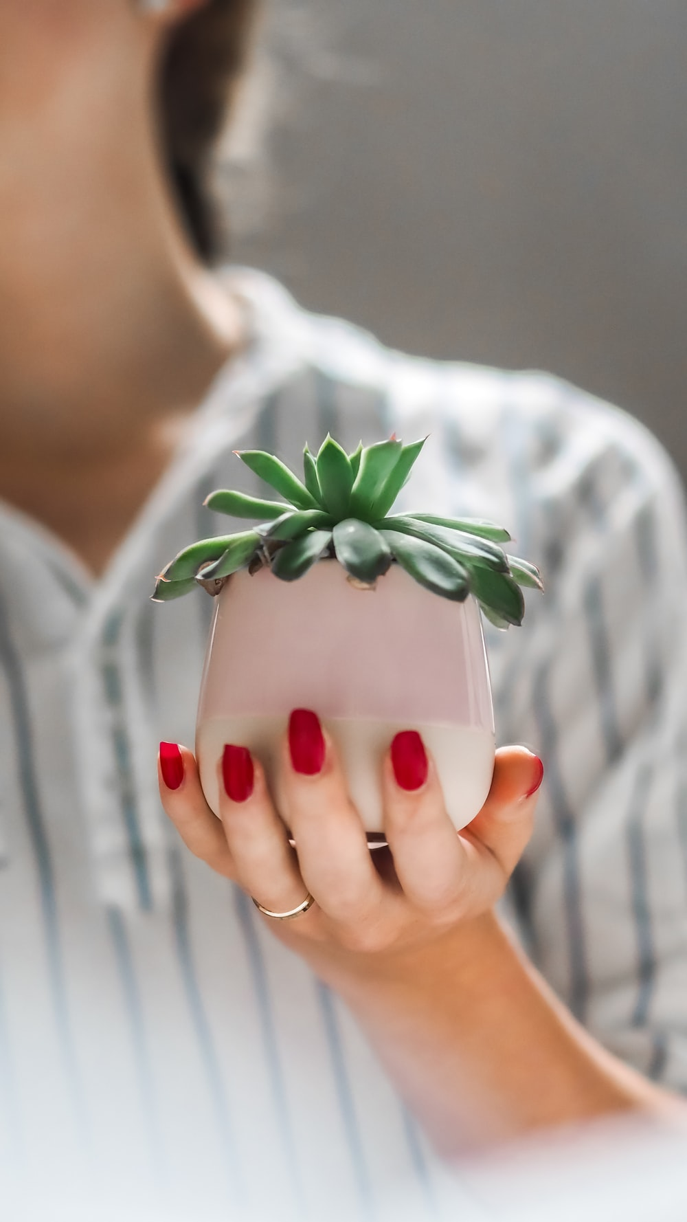 person holding white ceramic mug with green plant