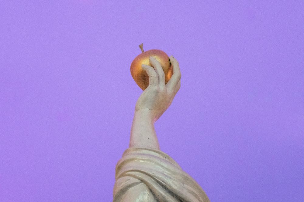 person holding orange fruit during daytime