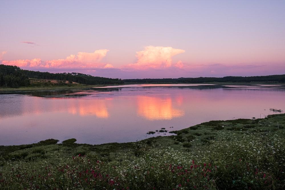 body of water near green grass field during sunset