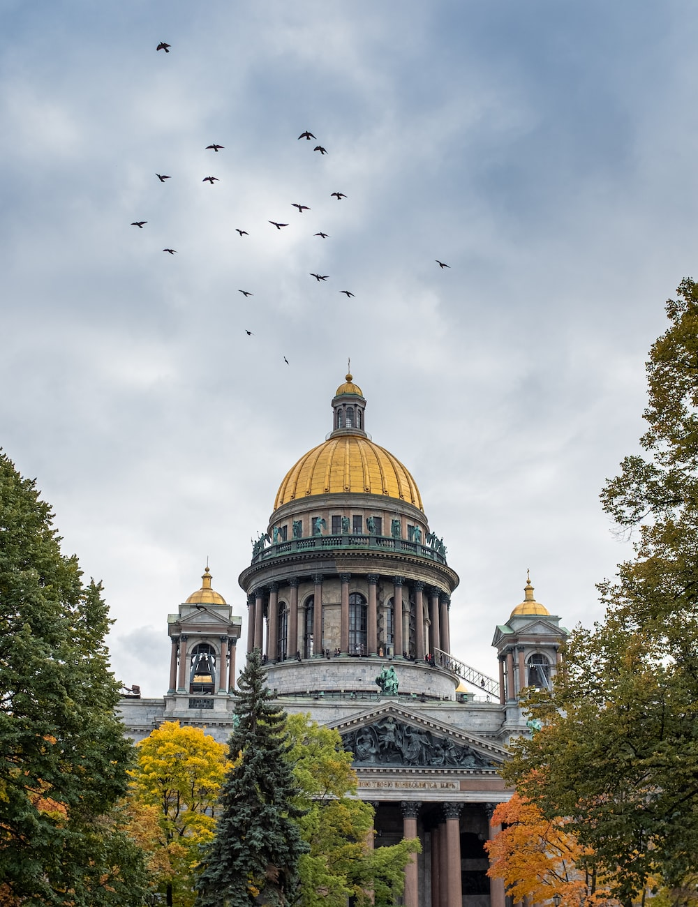 flock of birds flying over brown and white dome building during daytime