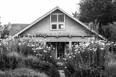 grayscale photo of house near trees cottage zoom background