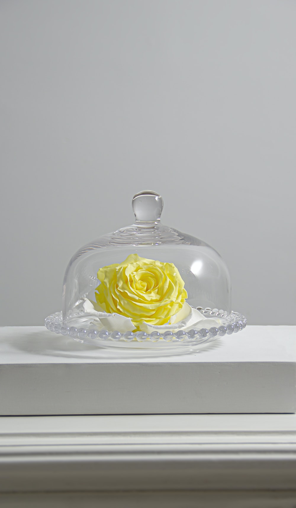 clear glass cake dome on white table