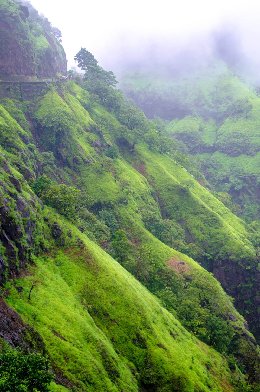 green grass covered mountain during daytime