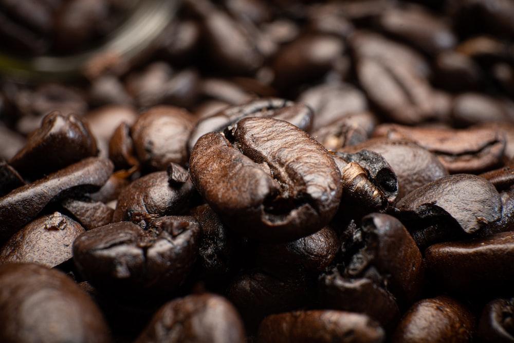 brown coffee beans in tilt shift lens
