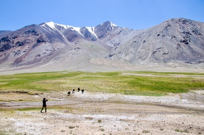 2 people walking on green grass field near gray mountain during daytime tajikistan zoom background