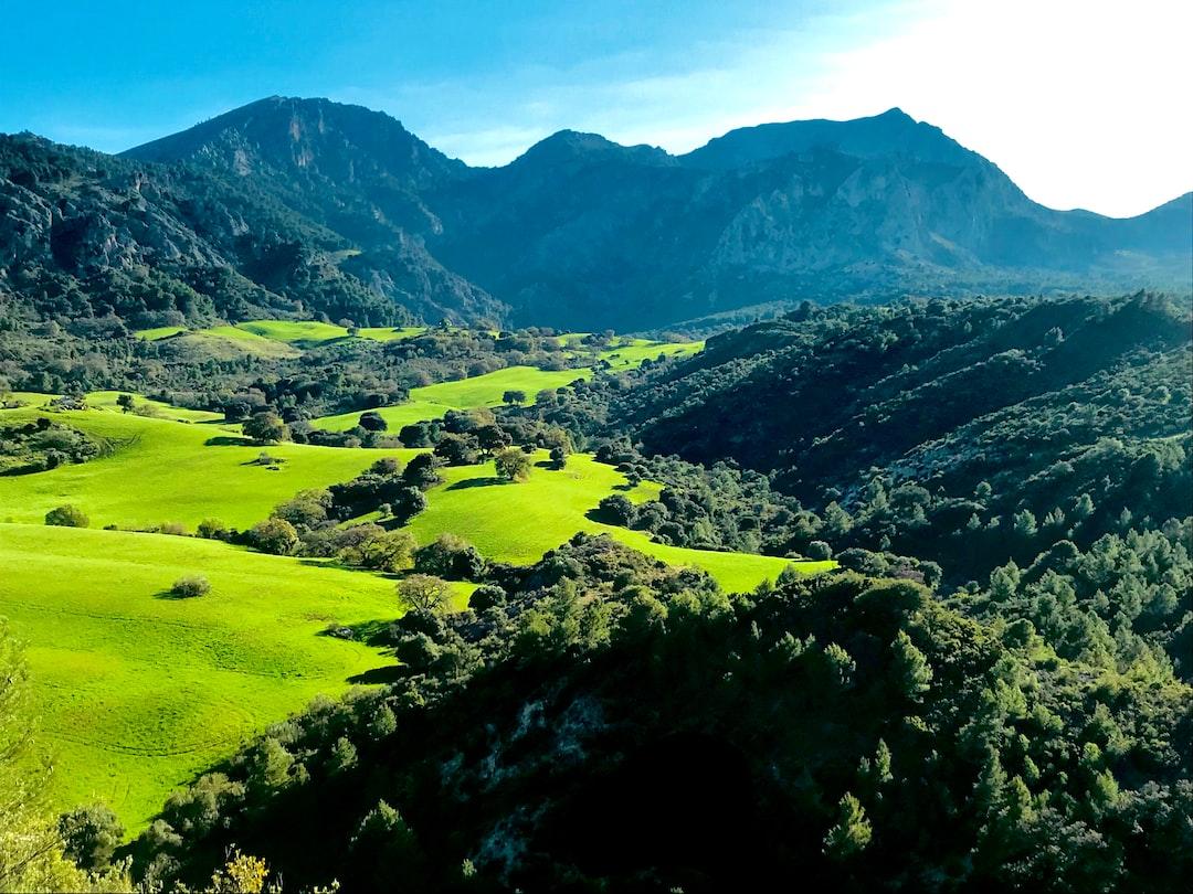 Casarabonela, Málaga, España Spain Green Forest