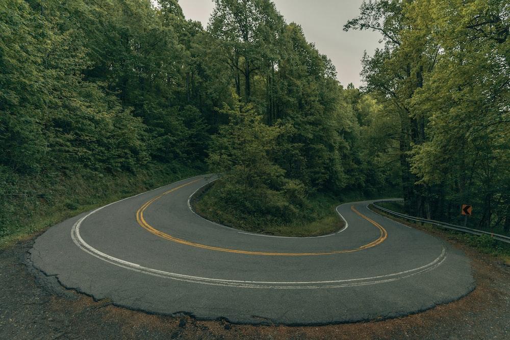 gray asphalt road in between green trees during daytime