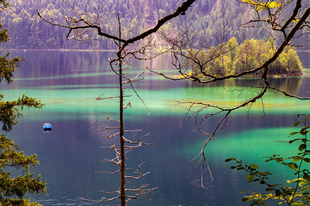 """View from above between trees onto lake """"Eibsee"""" , a natural paradise of green and blue deep waters"""