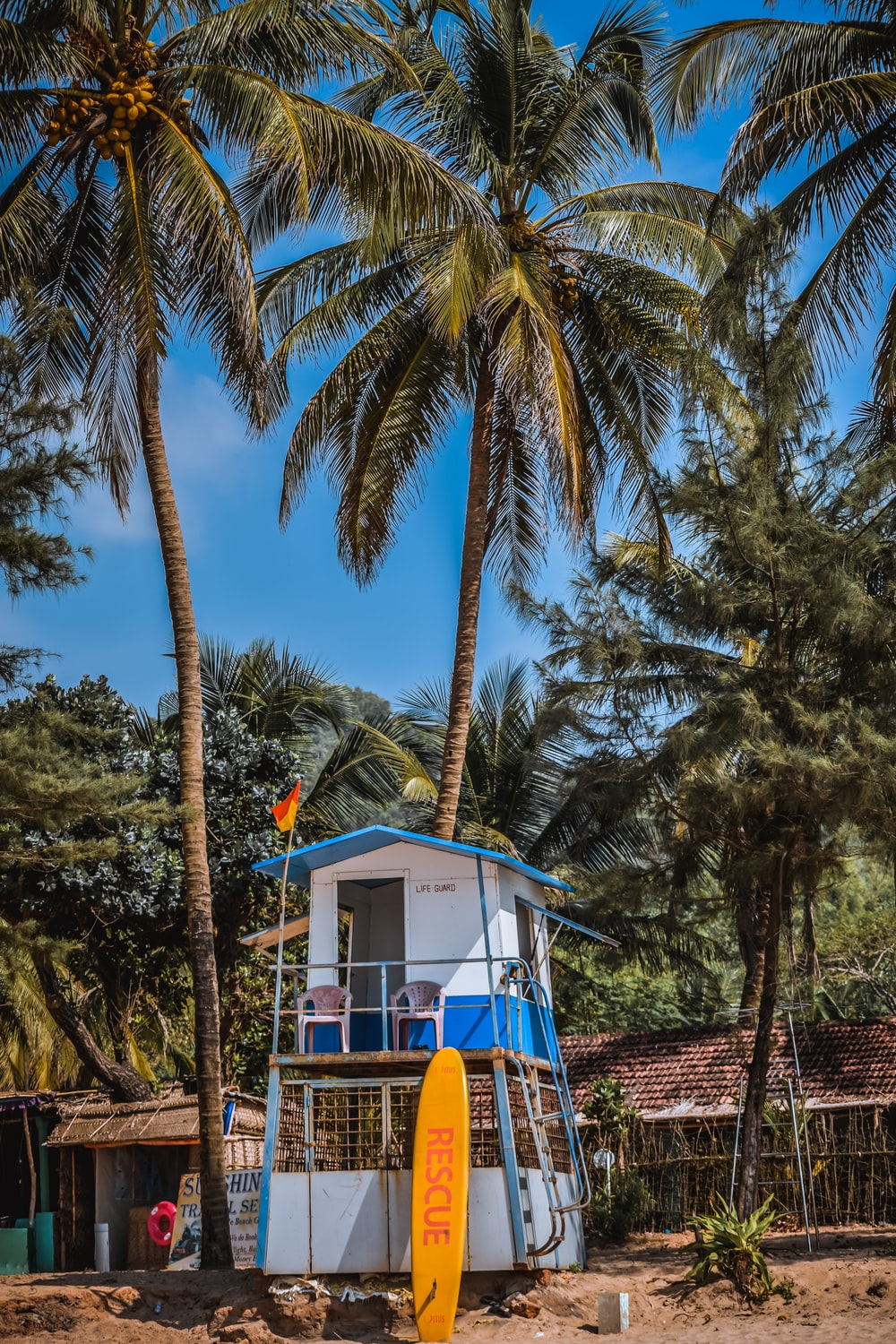 yellow and blue wooden house surrounded by palm trees