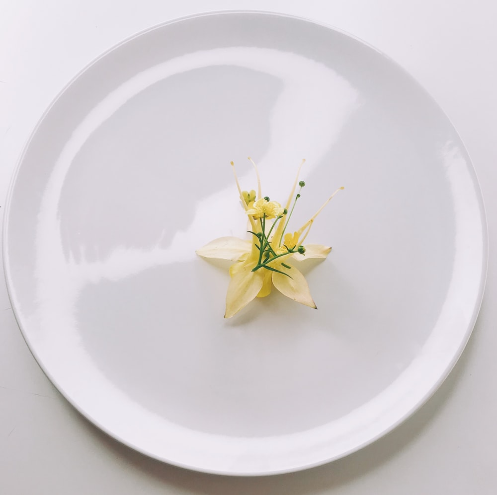yellow flower on white round plate