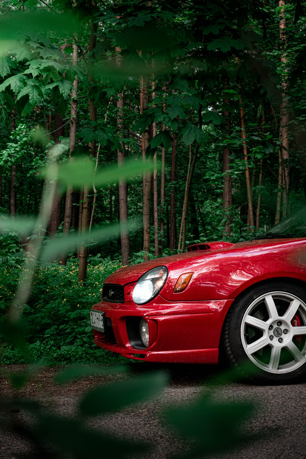 red car on forest during daytime