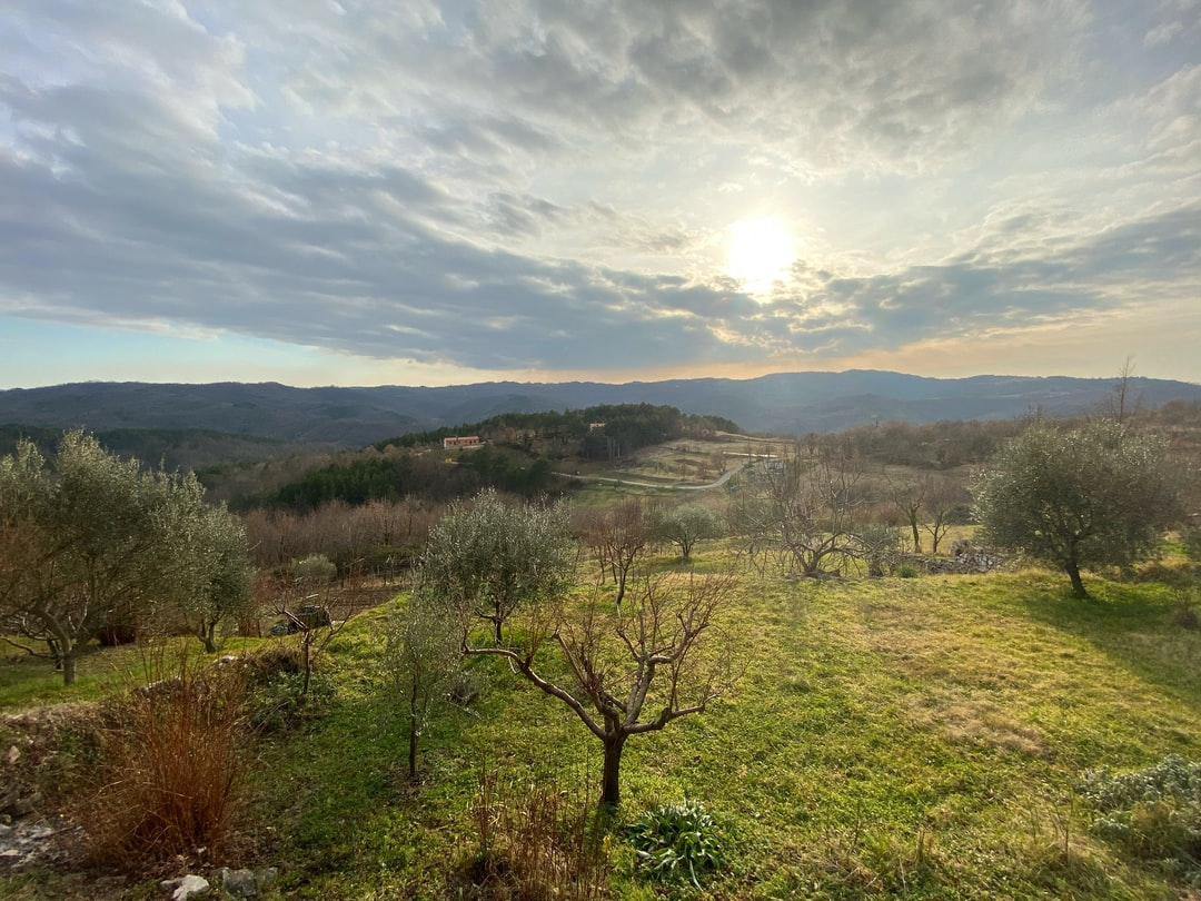Taken in Hum, Istria, Croatia in late January 2020. Živote damo, a Istre ne damo.