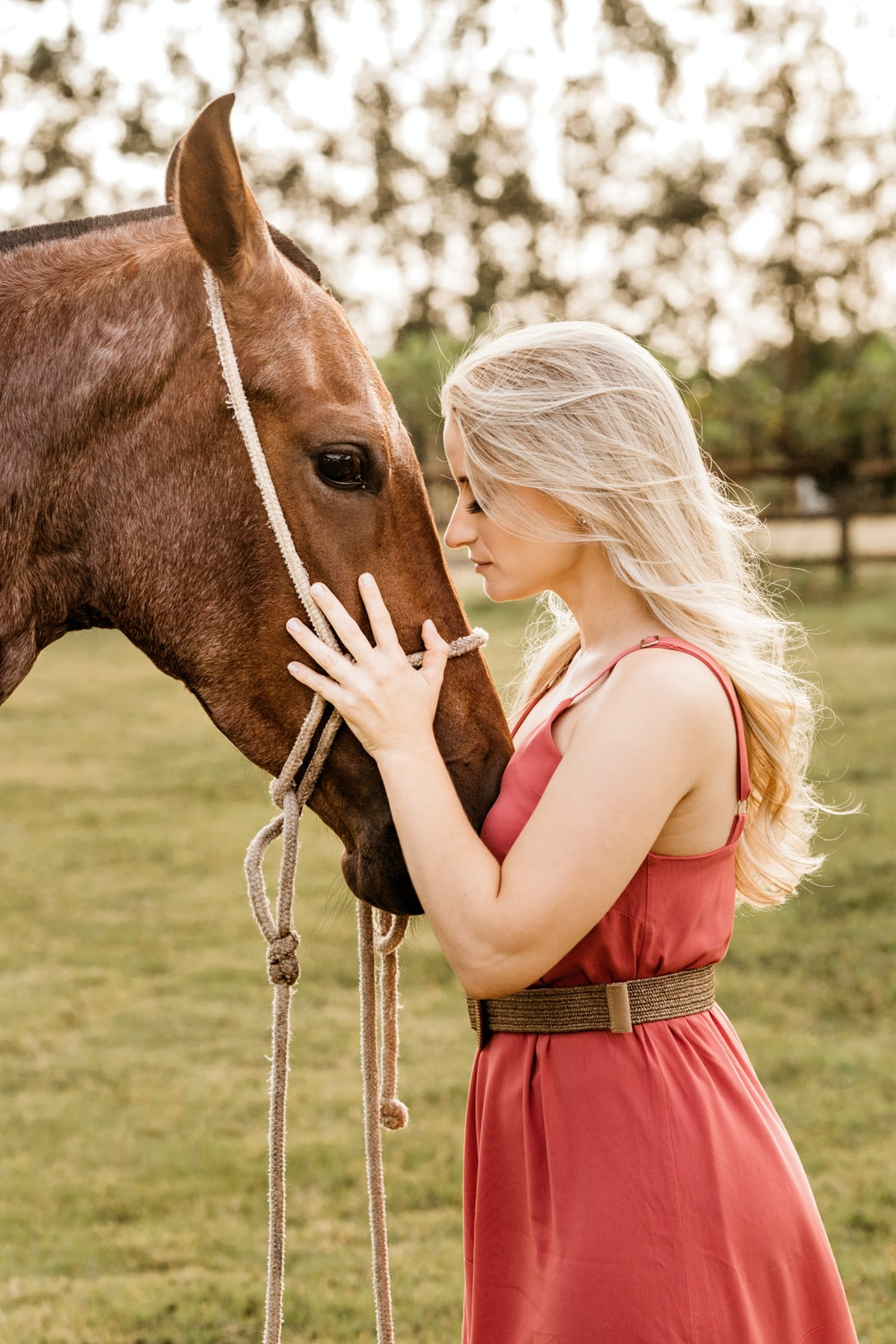 woman in red dress standing beside brown horse during daytime