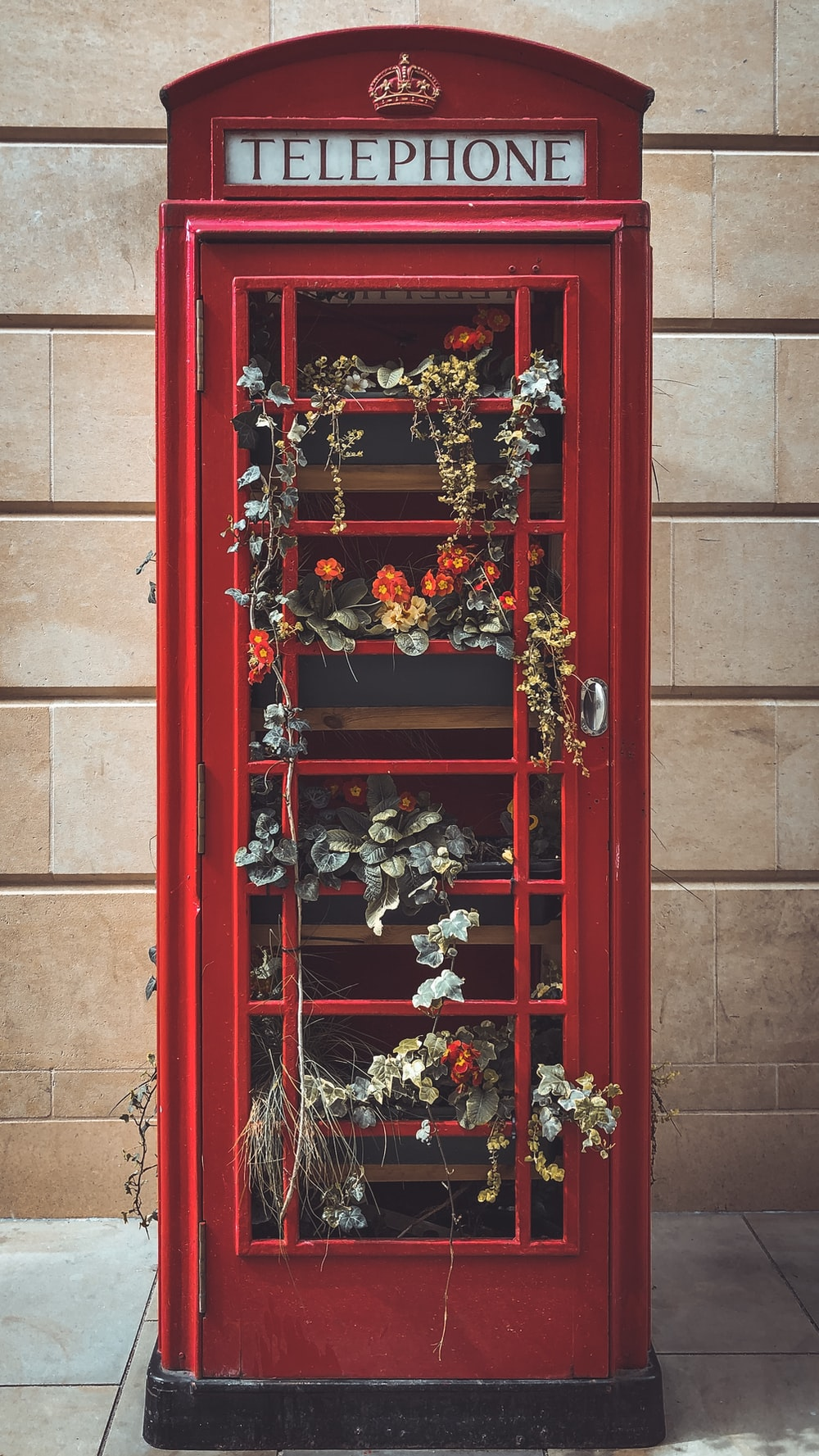 red wooden door with red and white flowers