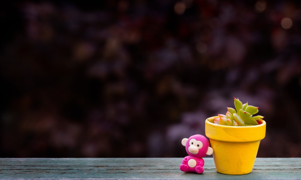 pink and yellow plastic toy on brown wooden table
