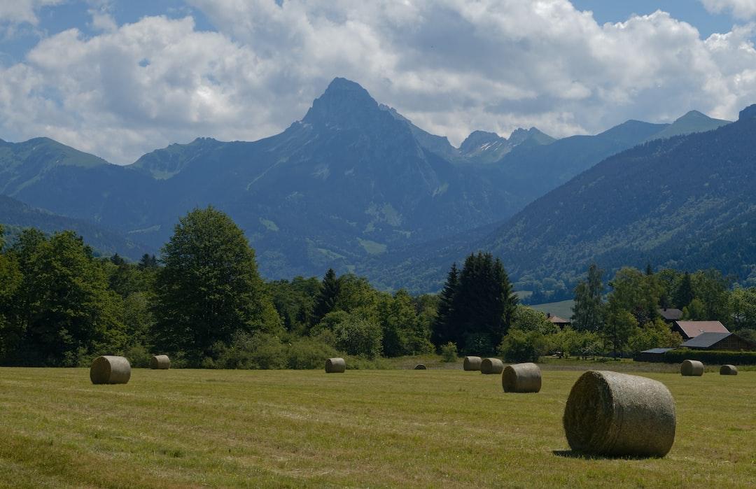 Hay balls after the crops. Balles de foin après la moisson.