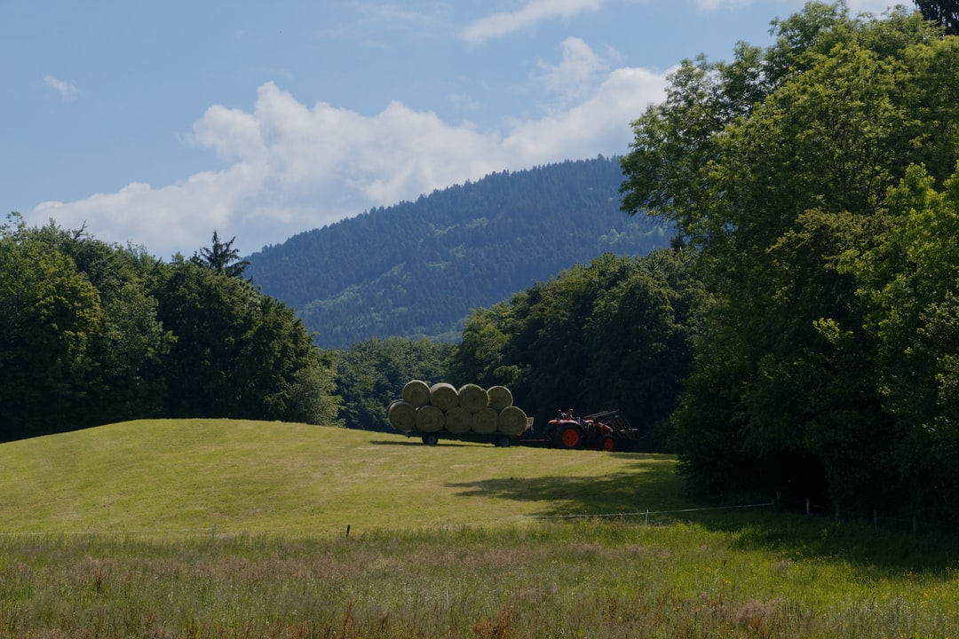 Farmer bring hay balls back home after the crops. Un fermier qui ramene les balles de foin à la ferme après la moisson.