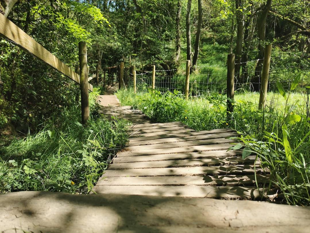 Walking hiking path through British countryside in the sunshine.