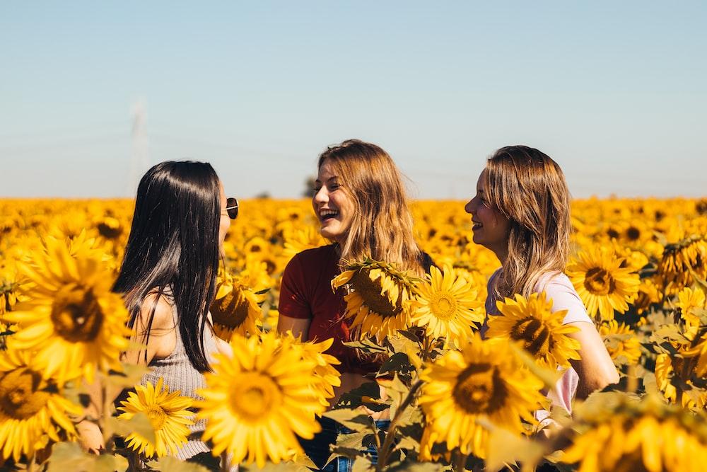 3 women in yellow sunflower field during daytime