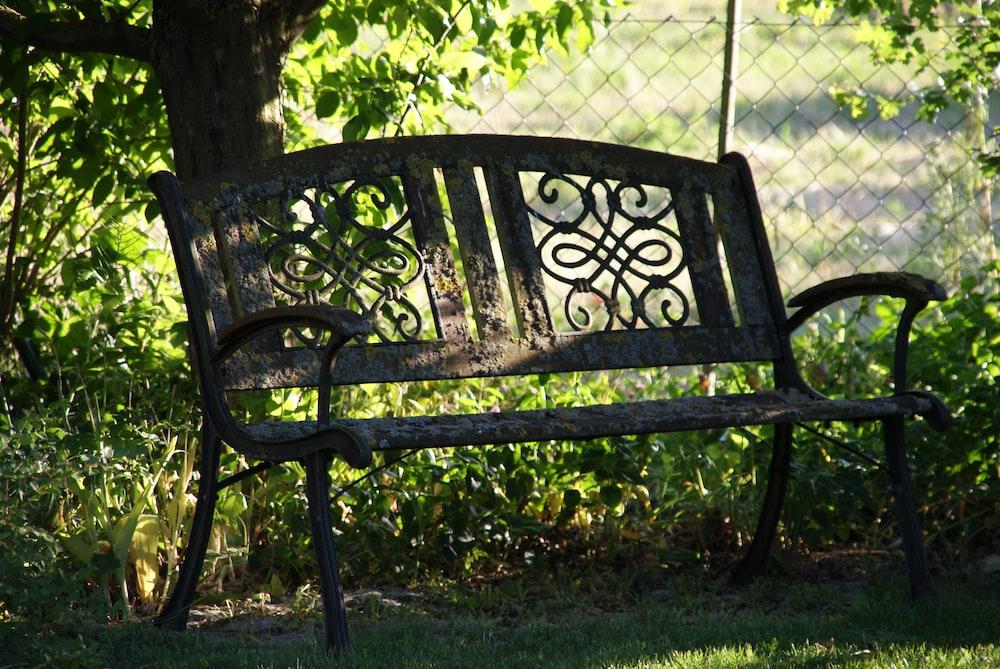 black metal bench near green grass