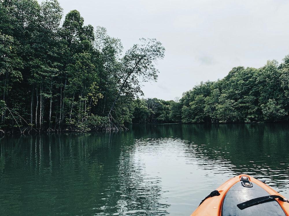 orange kayak on lake near green trees during daytime