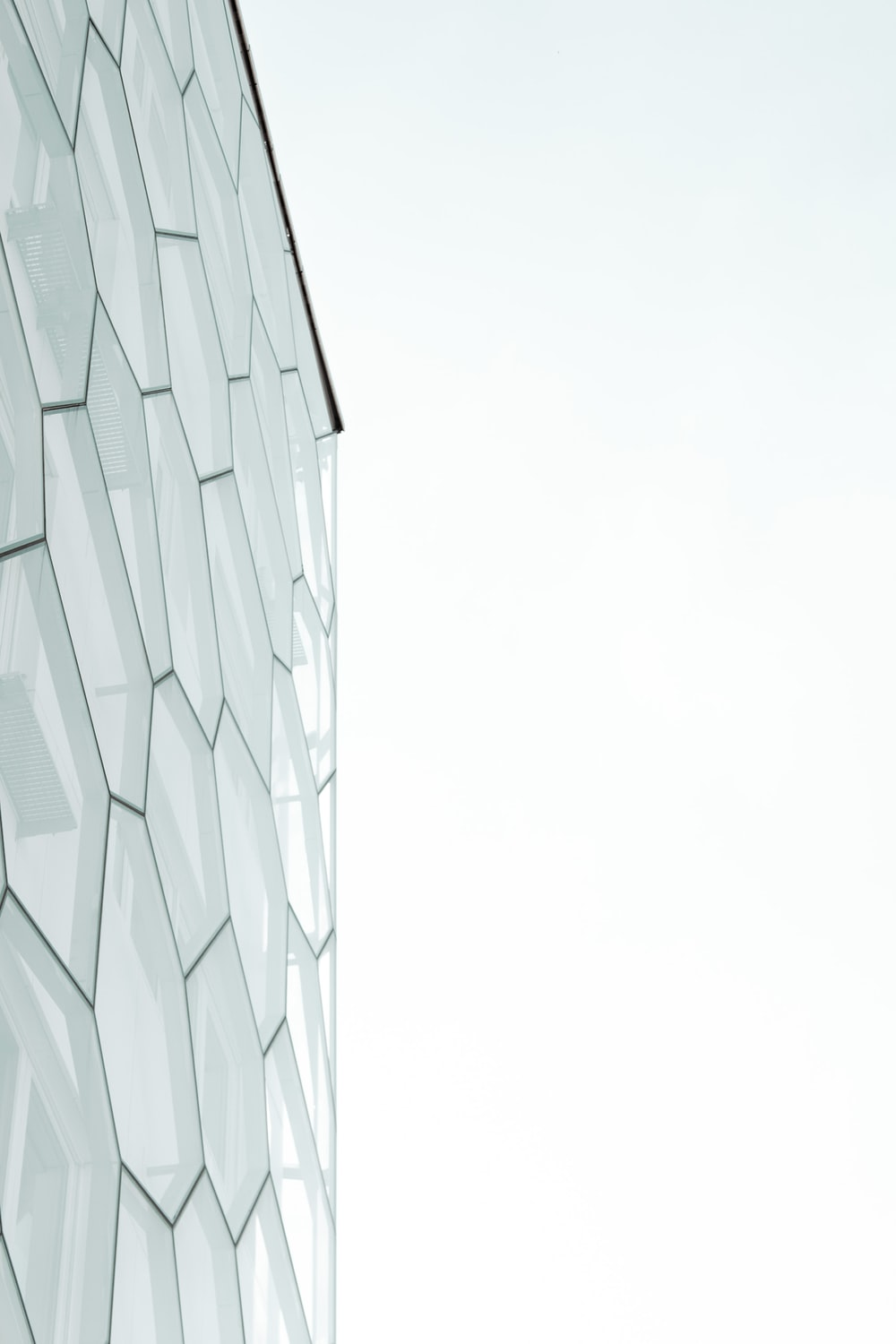 gray and white glass building