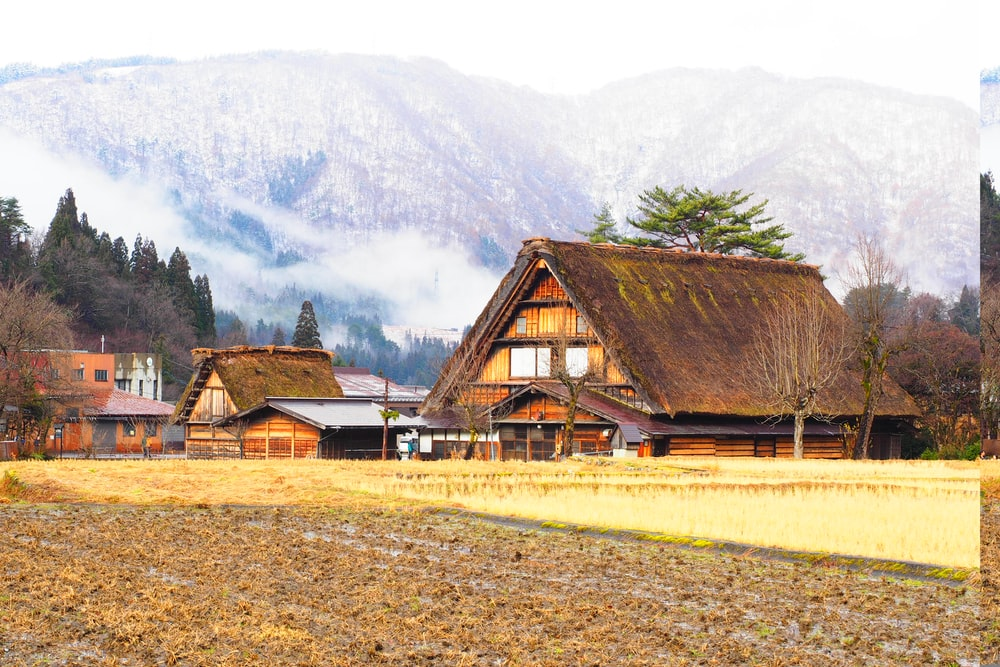 brown wooden house near green grass field and mountain during daytime
