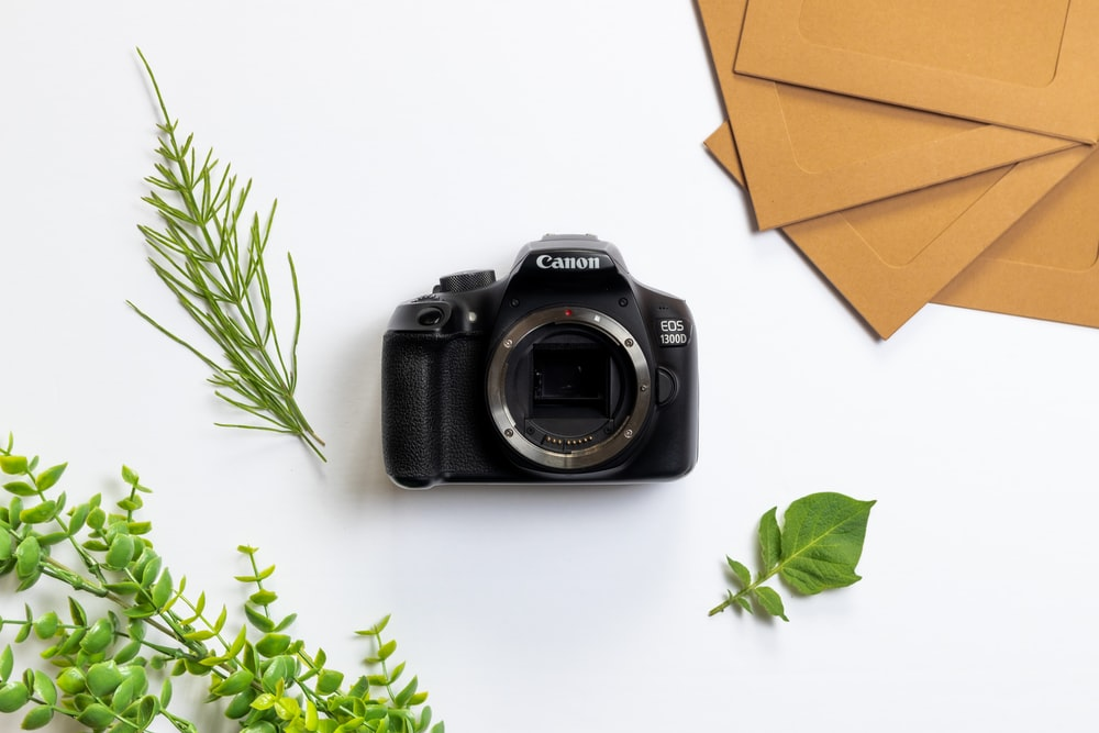 black nikon dslr camera beside green leaves