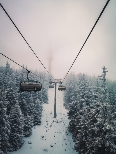 black cable car over snow covered trees