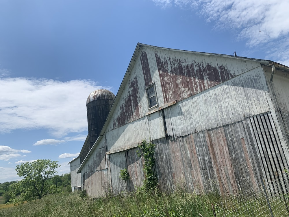 brown wooden barn house under blue sky during daytime