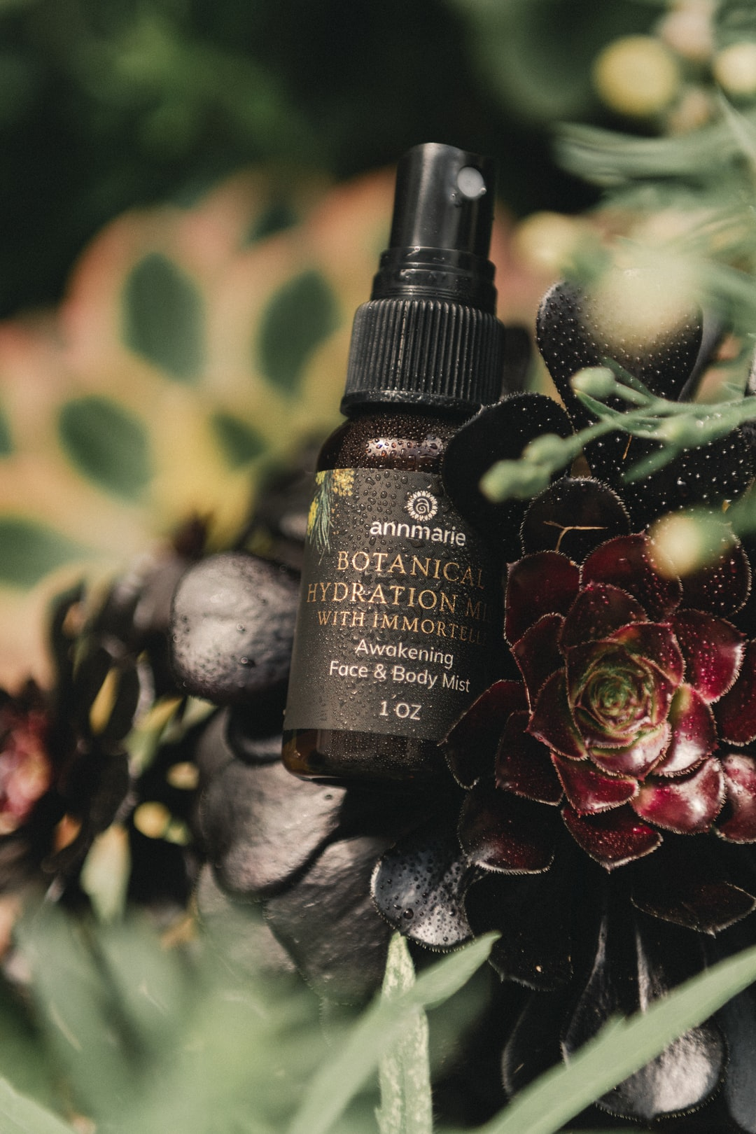 Organic and wildcrafted skin care by annmariegianni.com botanical hydration mist with immortelle
