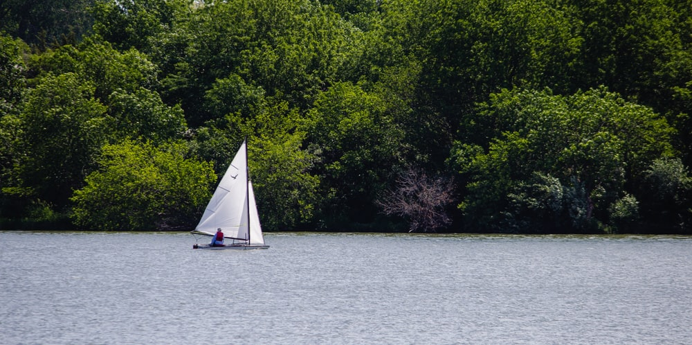 white sailboat on body of water near green trees during daytime