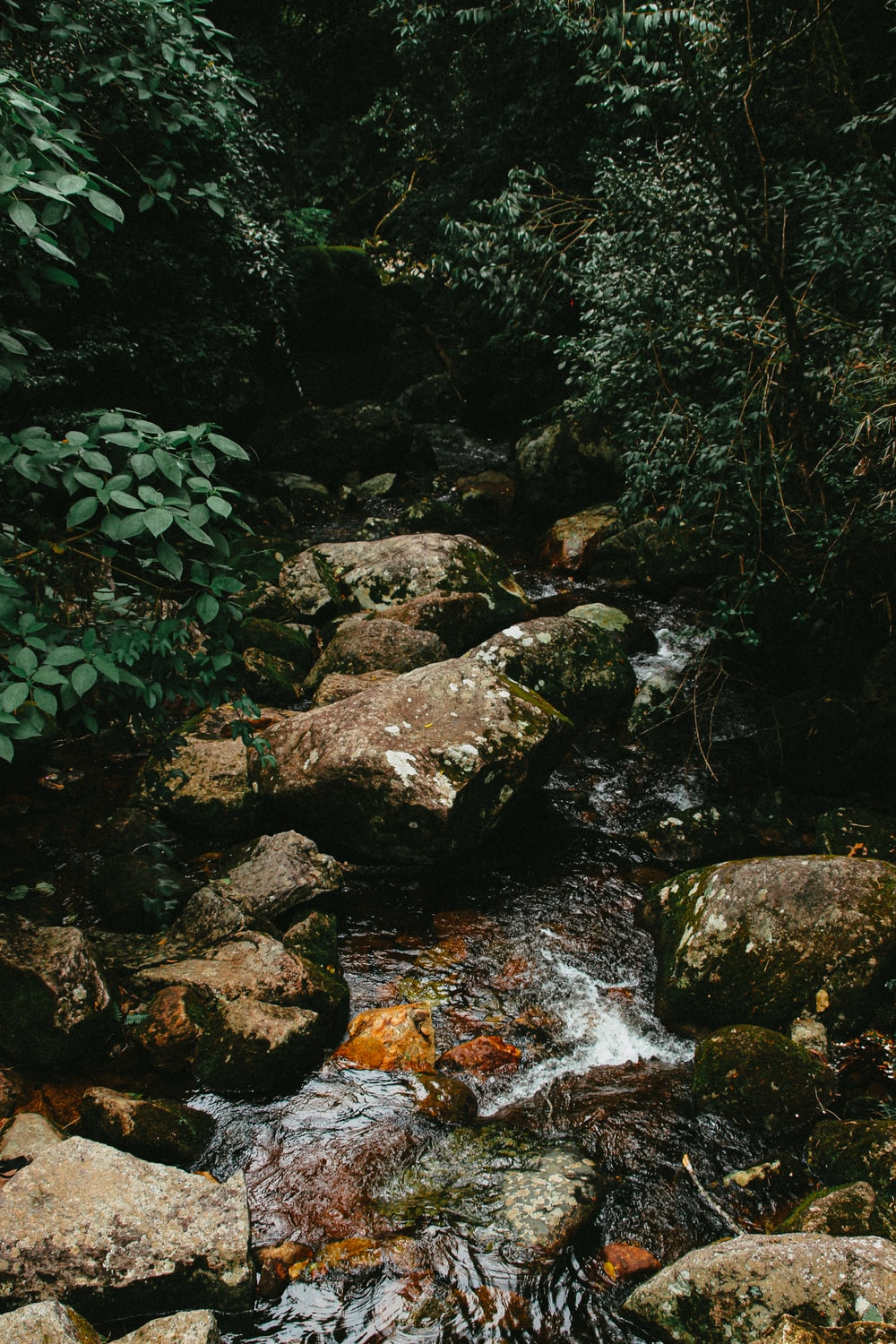 rocky river with rocks and green moss