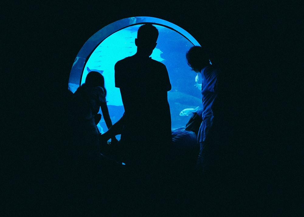 silhouette of man and woman standing in front of blue light