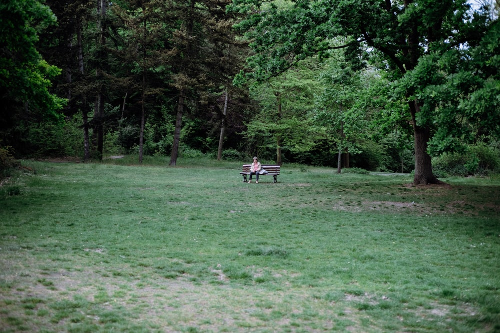people sitting on green grass field surrounded by green trees during daytime