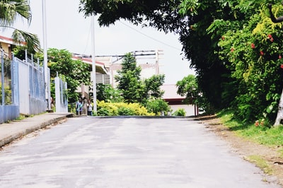 white concrete building near green trees during daytime vanuatu teams background