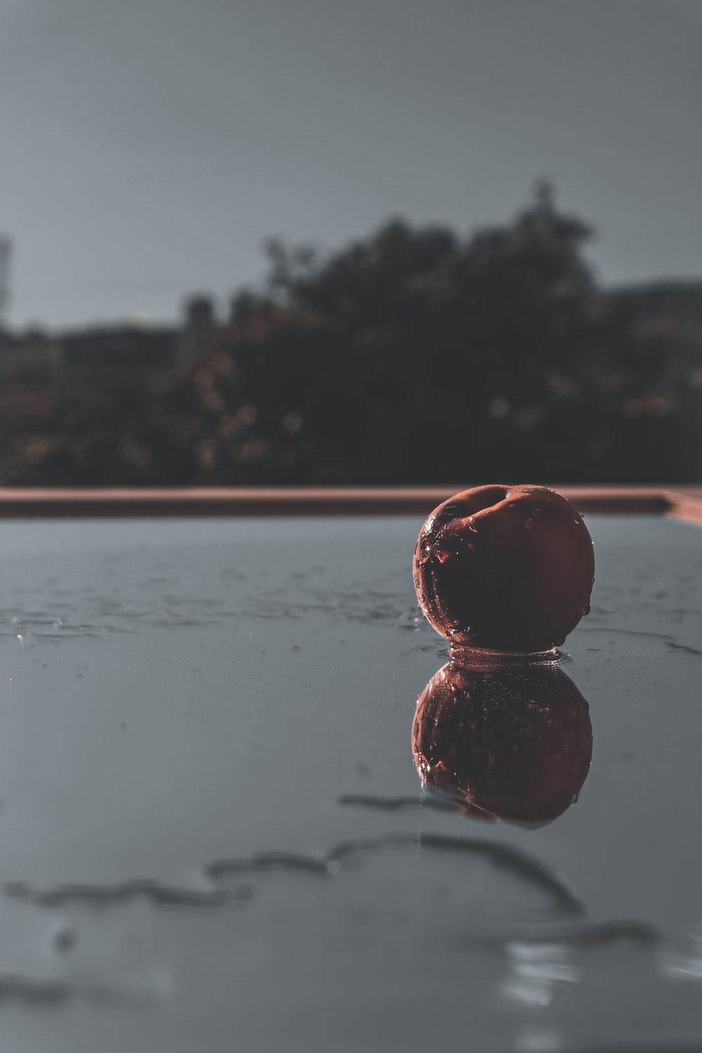 red ball on water during daytime