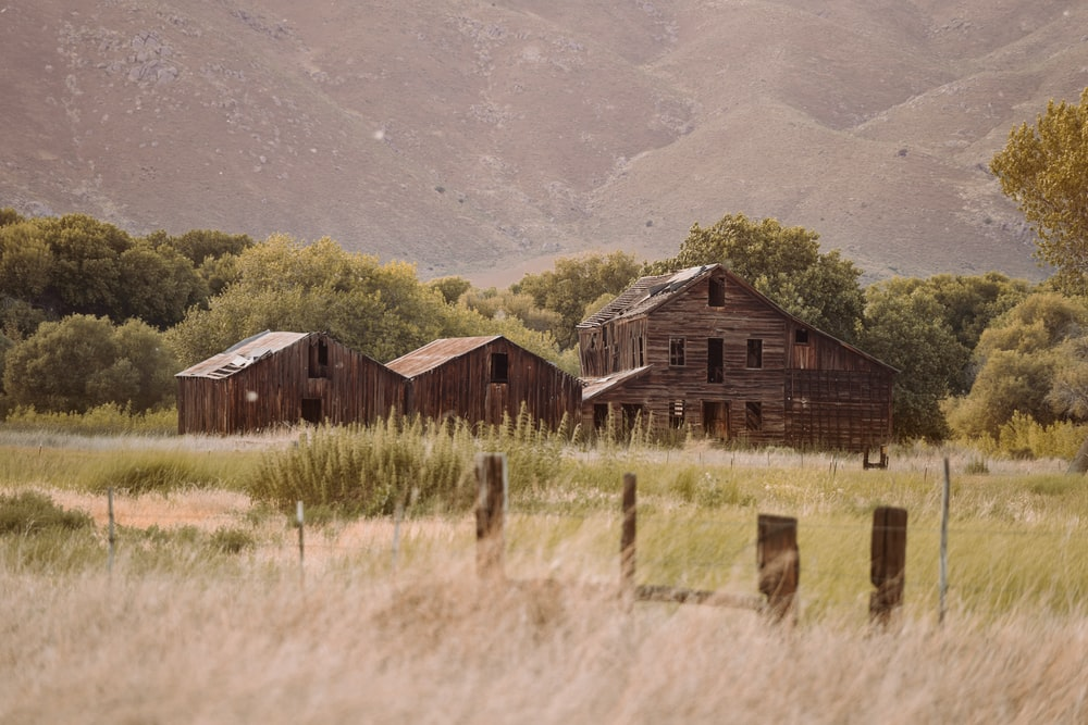 brown wooden house on green grass field near green mountain during daytime